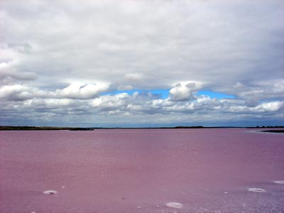 Pink lake, with clouds above